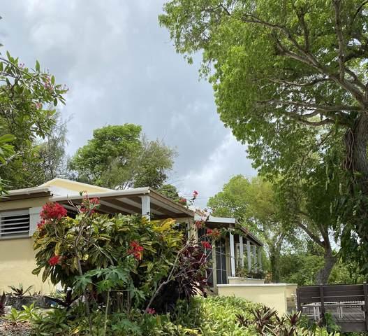 16 Little Princ Hil Co, St. Croix, VI 00820 (MLS #21-1020) :: Hanley Team | Farchette & Hanley Real Estate