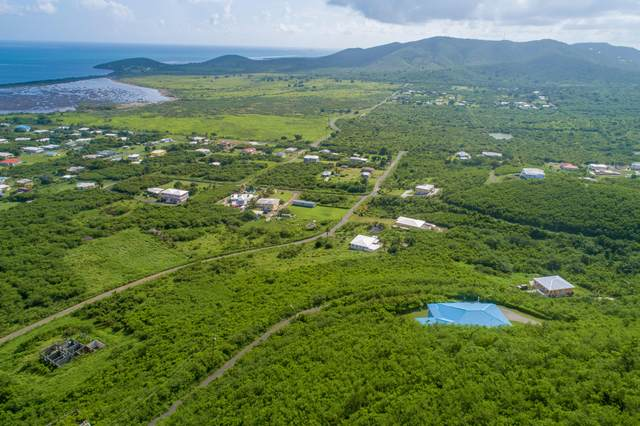 202 Union & Mt. Wash Ea, St. Croix, VI 00820 (MLS #21-1022) :: Hanley Team | Farchette & Hanley Real Estate