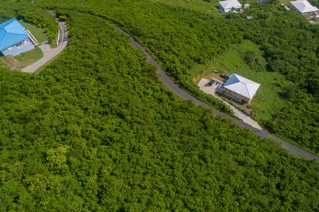 195 Union & Mt. Wash Ea, St. Croix, VI 00820 (MLS #21-1023) :: Hanley Team | Farchette & Hanley Real Estate