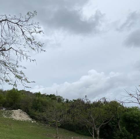 16-A Little Princ Hil Co, St. Croix, VI 00820 (MLS #21-1031) :: Hanley Team | Farchette & Hanley Real Estate