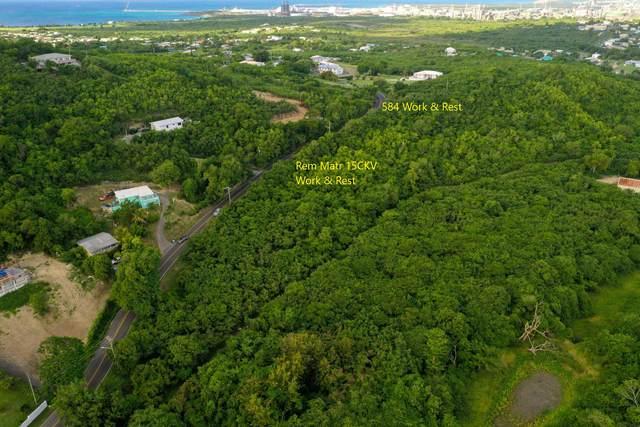 584 Work & Rest Co, St. Croix, VI 00820 (MLS #21-1051) :: Hanley Team | Farchette & Hanley Real Estate