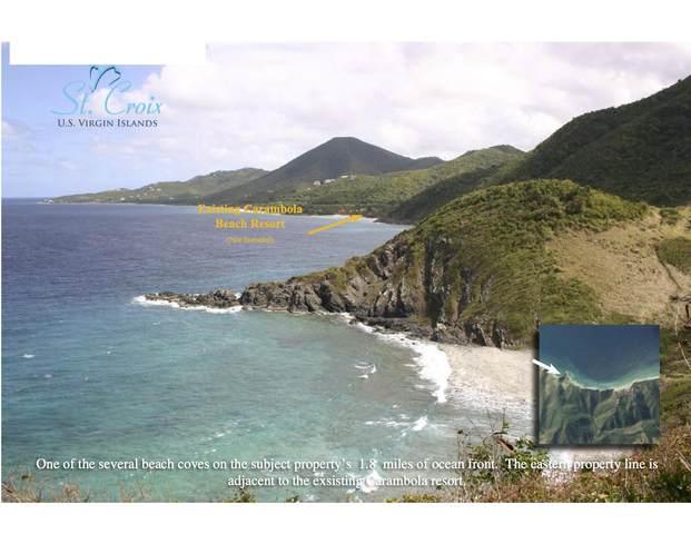 Rem Annaly Na, St. Croix, VI 00840 (MLS #21-1058) :: Hanley Team | Farchette & Hanley Real Estate