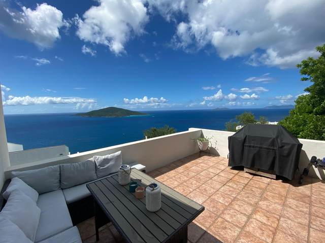 47 Lovenlund Gns, St. Thomas, VI 00802 (MLS #21-1065) :: Coldwell Banker Stout Realty