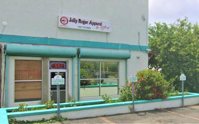 1A & 1B La Grande Prince Qu, St. Croix, VI 00840 (MLS #21-1066) :: Hanley Team | Farchette & Hanley Real Estate