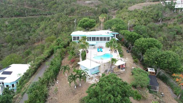 49 Hermon Hill Co, St. Croix, VI 00820 (MLS #21-1068) :: Coldwell Banker Stout Realty