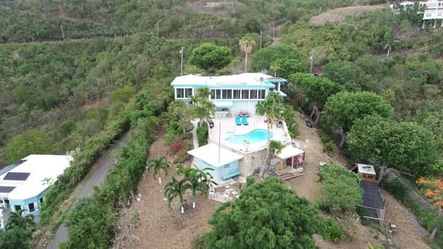 49 Hermon Hill Co, St. Croix, VI 00820 (MLS #21-1068) :: Hanley Team | Farchette & Hanley Real Estate