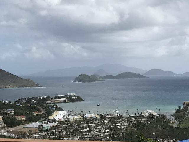 20-1B Smith Bay Ee, St. Thomas, VI 00802 (MLS #21-1071) :: Coldwell Banker Stout Realty