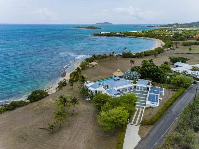 9 Shoys (The) Ea, St. Croix, VI 00820 (MLS #21-1078) :: Hanley Team | Farchette & Hanley Real Estate
