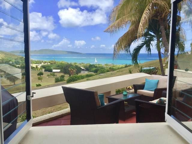 132 Teagues Bay Eb, St. Croix, VI 00820 (MLS #21-1083) :: Hanley Team   Farchette & Hanley Real Estate