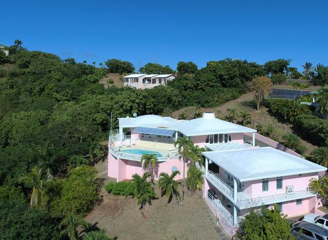 139 Anna's Hope Ea, St. Croix, VI 00820 (MLS #21-109) :: Coldwell Banker Stout Realty