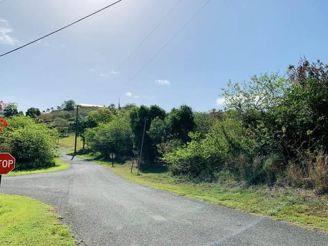 67 Anna's Hope Ea, St. Croix, VI 00820 (MLS #21-1094) :: Hanley Team | Farchette & Hanley Real Estate