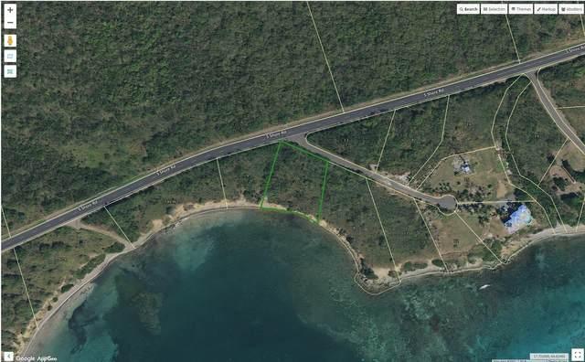 10 Wood Cottage Eb, St. Croix, VI 00820 (MLS #21-1098) :: Hanley Team | Farchette & Hanley Real Estate