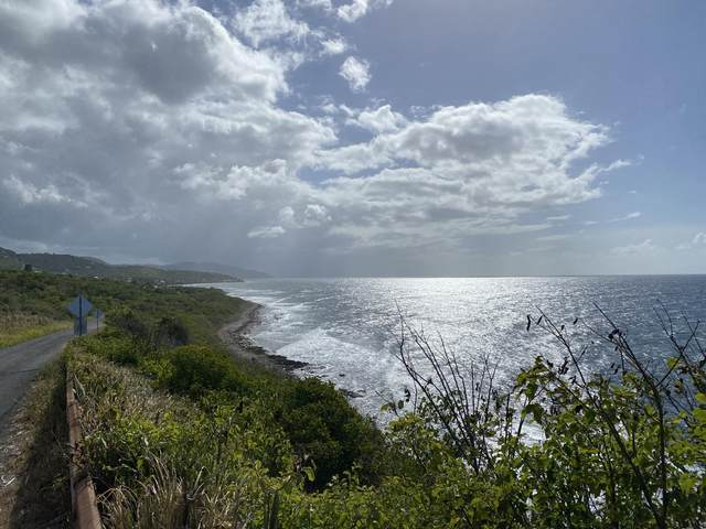 72-EF Clairmont Nb, St. Croix, VI 00820 (MLS #21-1100) :: The Boulger Team @ Calabash Real Estate