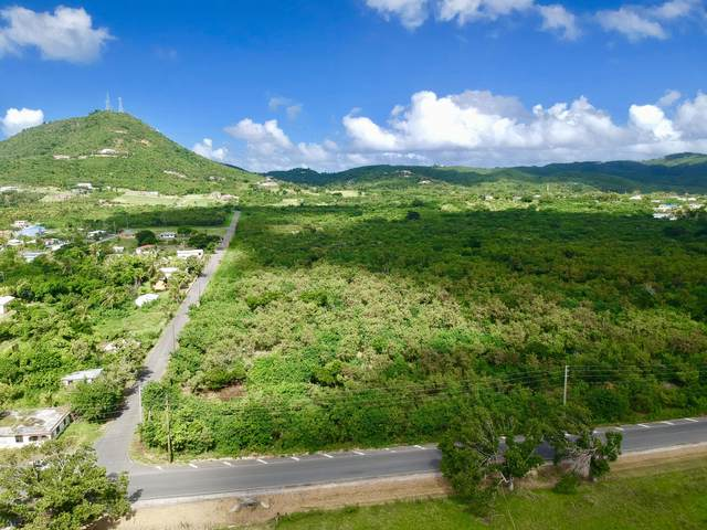 13 Mon Bijou Ki, St. Croix, VI 00820 (MLS #21-1108) :: Hanley Team | Farchette & Hanley Real Estate