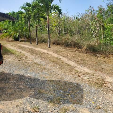 178 Ruby (Diamond) Qu, St. Croix, VI 00820 (MLS #21-1113) :: Coldwell Banker Stout Realty