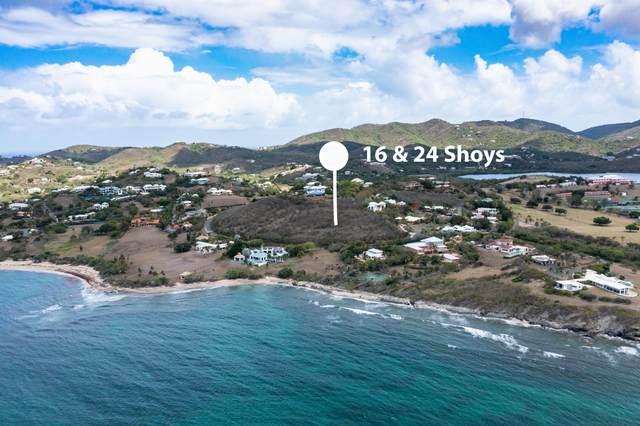 16 & 24 Anna's Hope Ea, St. Croix, VI 00820 (MLS #21-1115) :: Hanley Team | Farchette & Hanley Real Estate
