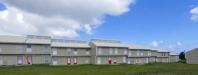 20 & 21 Plessen Pr, St. Croix, VI 00840 (MLS #21-1122) :: Hanley Team | Farchette & Hanley Real Estate