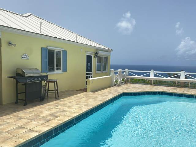 5D Teagues Bay Eb, St. Croix, VI 00820 (MLS #21-1124) :: Coldwell Banker Stout Realty