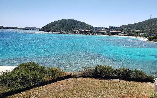 11B-8 REM Smith Bay Ee, St. Thomas, VI 00802 (MLS #21-1127) :: Coldwell Banker Stout Realty