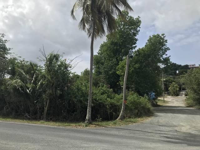 296-A La Grande Prince Co, St. Croix, VI 00820 (MLS #21-1134) :: Coldwell Banker Stout Realty