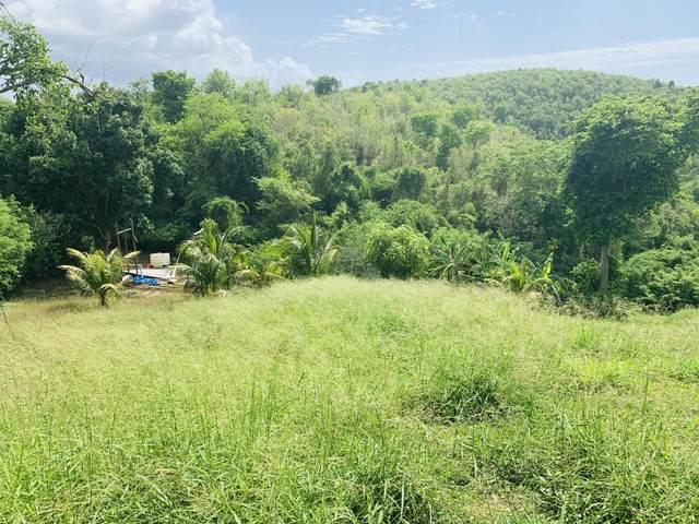 116 Little La Grange We, St. Croix, VI 00840 (MLS #21-1141) :: Coldwell Banker Stout Realty
