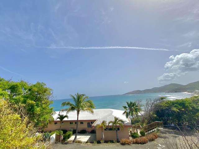 22 South Grapetree Eb, St. Croix, VI 00820 (MLS #21-1161) :: Hanley Team | Farchette & Hanley Real Estate
