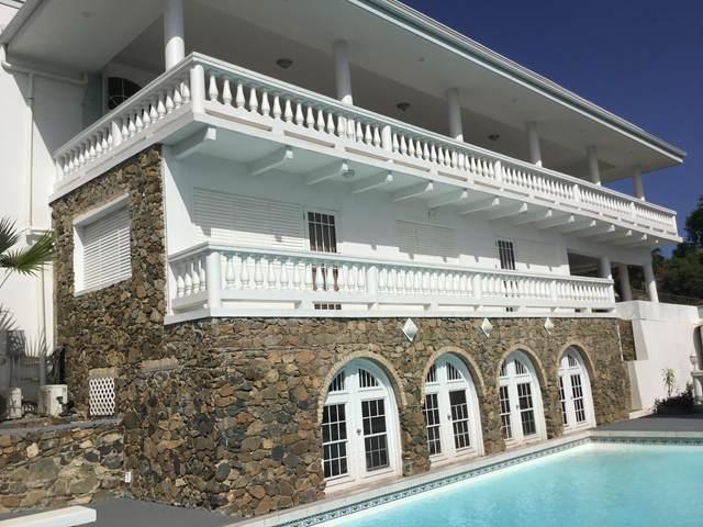 3 K Bakkero Fb, St. Thomas, VI 00802 (MLS #21-1164) :: The Boulger Team @ Calabash Real Estate