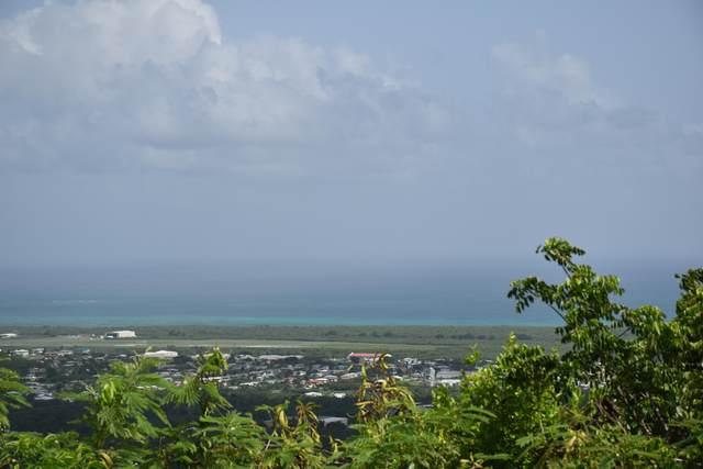 46 Walderggaard Pr, St. Croix, VI 00840 (MLS #21-1167) :: Hanley Team | Farchette & Hanley Real Estate