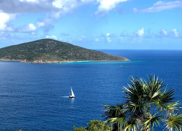 9 Lower Lovenlund Gns, St. Thomas, VI 00802 (MLS #21-117) :: The Boulger Team @ Calabash Real Estate