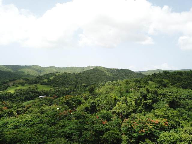 Matr. 29a Brooks Hill We, St. Croix, VI 00840 (MLS #21-1171) :: Hanley Team | Farchette & Hanley Real Estate