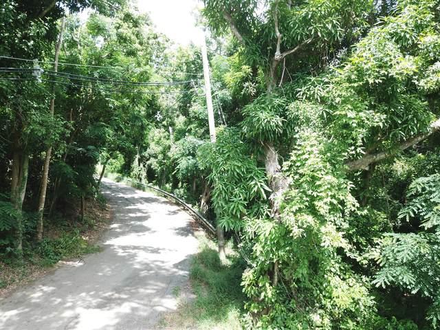 33 Orange Grove We, St. Croix, VI 00840 (MLS #21-1173) :: Hanley Team | Farchette & Hanley Real Estate