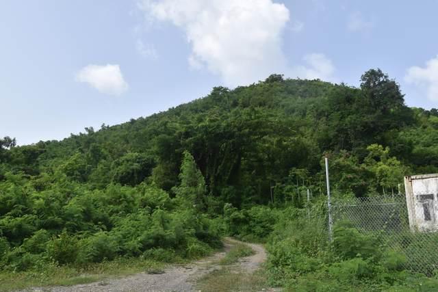 17 Hams Bay Na, St. Croix, VI 00840 (MLS #21-1174) :: Hanley Team | Farchette & Hanley Real Estate