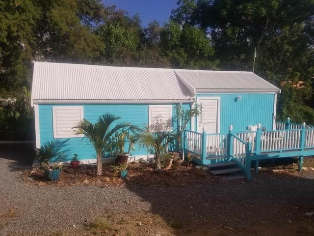 9 East Street Ch, St. Croix, VI 00820 (MLS #21-1182) :: Hanley Team | Farchette & Hanley Real Estate