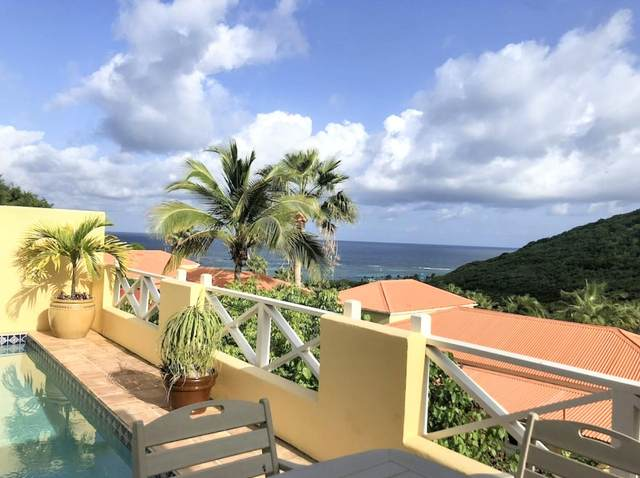 45 Christiansted Ch, St. Croix, VI 00820 (MLS #21-1183) :: The Boulger Team @ Calabash Real Estate