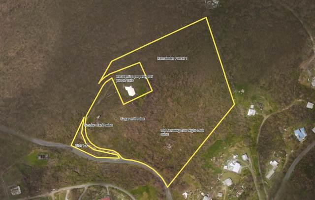1, 1F Morningstar Qu, St. Croix, VI 00820 (MLS #21-1188) :: The Boulger Team @ Calabash Real Estate