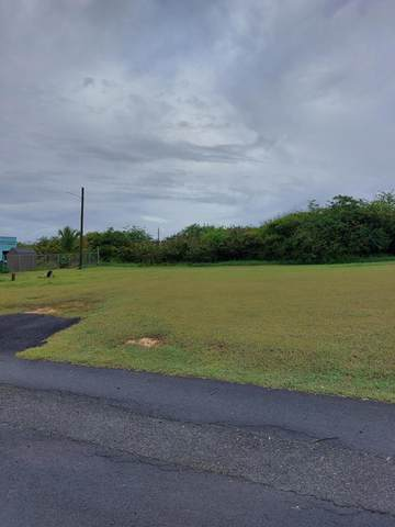 98DA, 98DC Whim (Two Will) We, St. Croix, VI 00840 (MLS #21-1217) :: Coldwell Banker Stout Realty