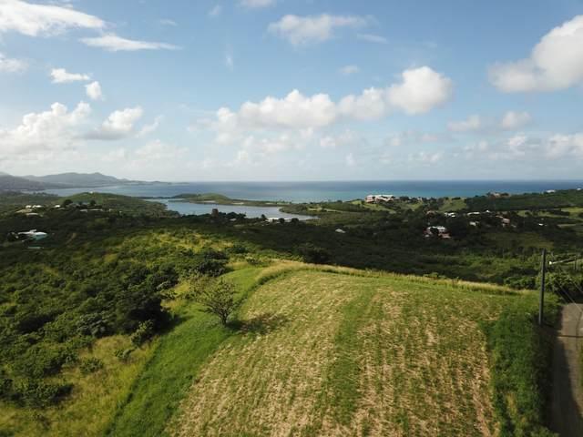 60 Boetzberg Ea, St. Croix, VI 00820 (MLS #21-123) :: Hanley Team | Farchette & Hanley Real Estate