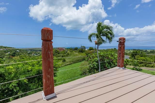 93A La Grange We, St. Croix, VI 00840 (MLS #21-1237) :: Hanley Team   Farchette & Hanley Real Estate