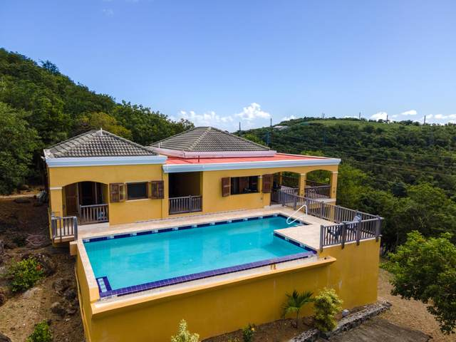 70 Water Island Ss, St. Thomas, VI 00802 (MLS #21-124) :: The Boulger Team @ Calabash Real Estate