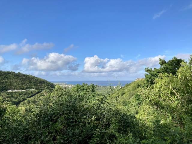 148 Little La Grange We, St. Croix, VI 00840 (MLS #21-1246) :: Hanley Team   Farchette & Hanley Real Estate