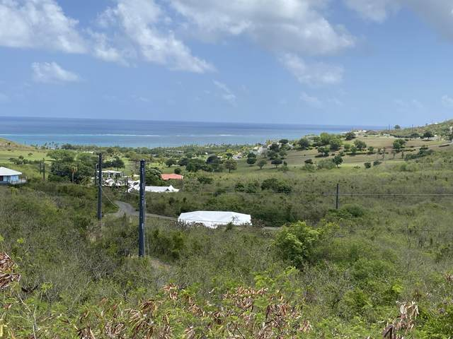 25 Catherine's Hope Eb, St. Croix, VI 00820 (MLS #21-1248) :: Coldwell Banker Stout Realty