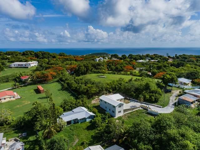 98AB La Grande Prince Qu, St. Croix, VI 00820 (MLS #21-1268) :: Hanley Team   Farchette & Hanley Real Estate