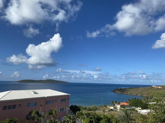 E-4 Coakley Bay Eb, St. Croix, VI 00820 (MLS #21-1270) :: Coldwell Banker Stout Realty