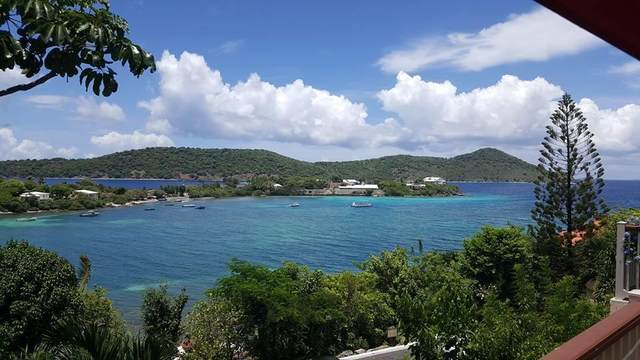E12 Smith Bay Ee, St. Thomas, VI 00802 (MLS #21-1271) :: Coldwell Banker Stout Realty