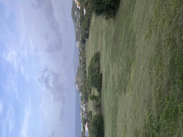 193 Judith's Fancy Qu, St. Croix, VI 00820 (MLS #21-1284) :: Hanley Team   Farchette & Hanley Real Estate