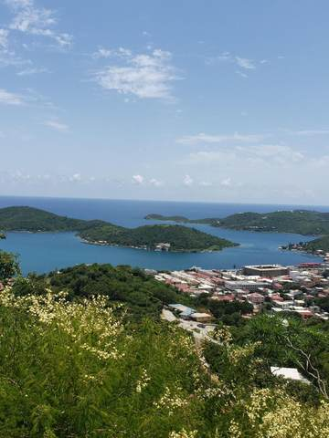 2-2 & 2-3 Agnes Fancy Gns, St. Thomas, VI 00802 (MLS #21-1289) :: Coldwell Banker Stout Realty