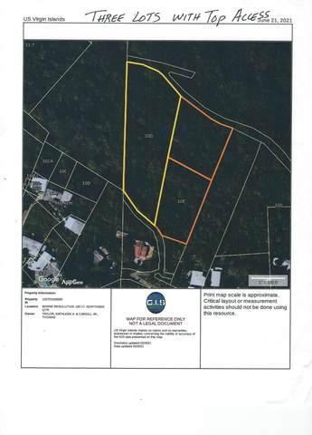 10D,10E-1& Bonne Resolution Lns, St. Thomas, VI 00802 (MLS #21-1293) :: Hanley Team | Farchette & Hanley Real Estate