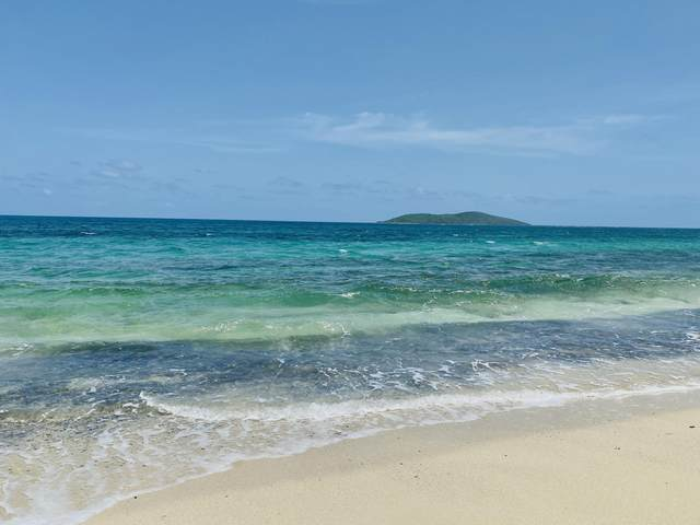 10 Green Cay Ea, St. Croix, VI 00820 (MLS #21-1300) :: Coldwell Banker Stout Realty