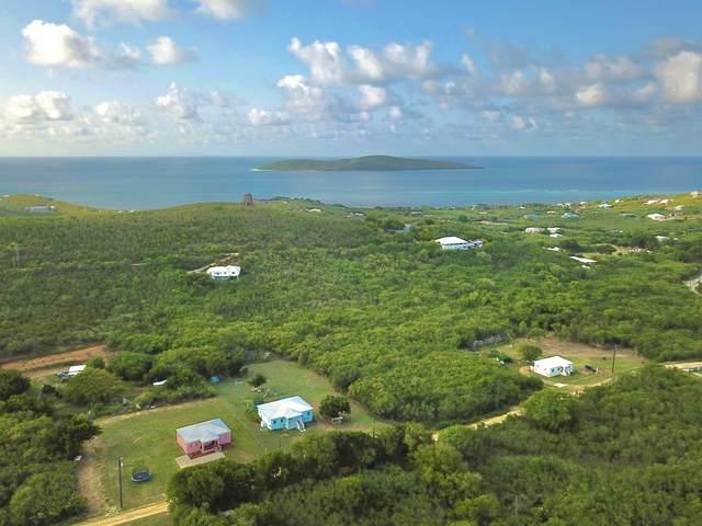 119 Hope & Carton H Eb, St. Croix, VI 00820 (MLS #21-1304) :: Hanley Team | Farchette & Hanley Real Estate