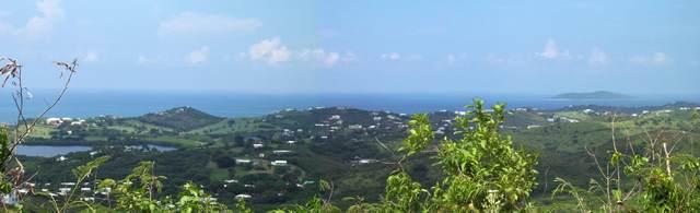 16 Eliza's Retreat Ea, St. Croix, VI 00820 (MLS #21-1311) :: Hanley Team | Farchette & Hanley Real Estate